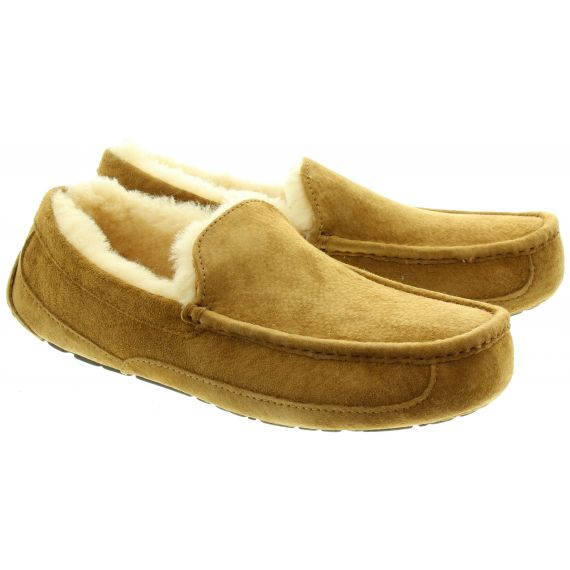 UGG Ascot Slippers in Chestnut