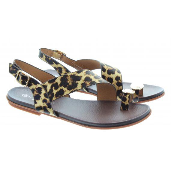 LUNAR Ladies Borneo Toe Loop Sandals in Leopard