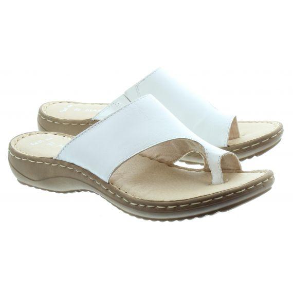 MARCO_TOZZI Marco Tozzi 27900 Toe Loop Sandal in White